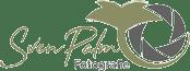 Sven Palm Logo